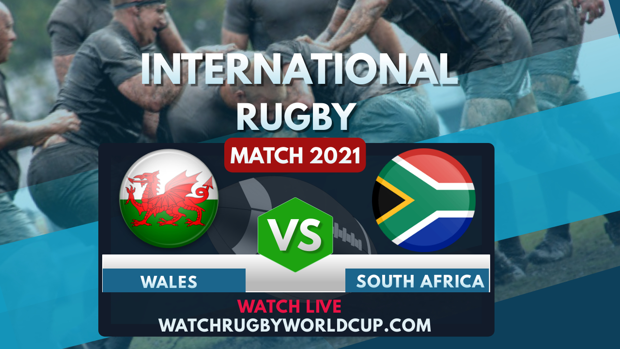 Wales Vs South Africa Live Stream 2021 | International Rugby