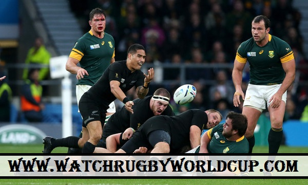 watch-semifinal-rugby-world-cup-south-africa-vs-all-blacks-online